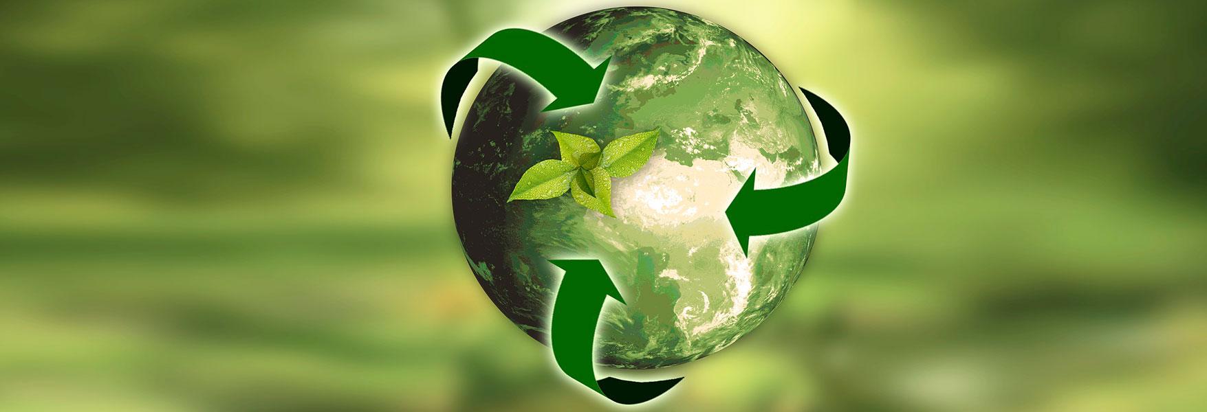¡El medio ambiente también es nuestra prioridad en SigmaQ!