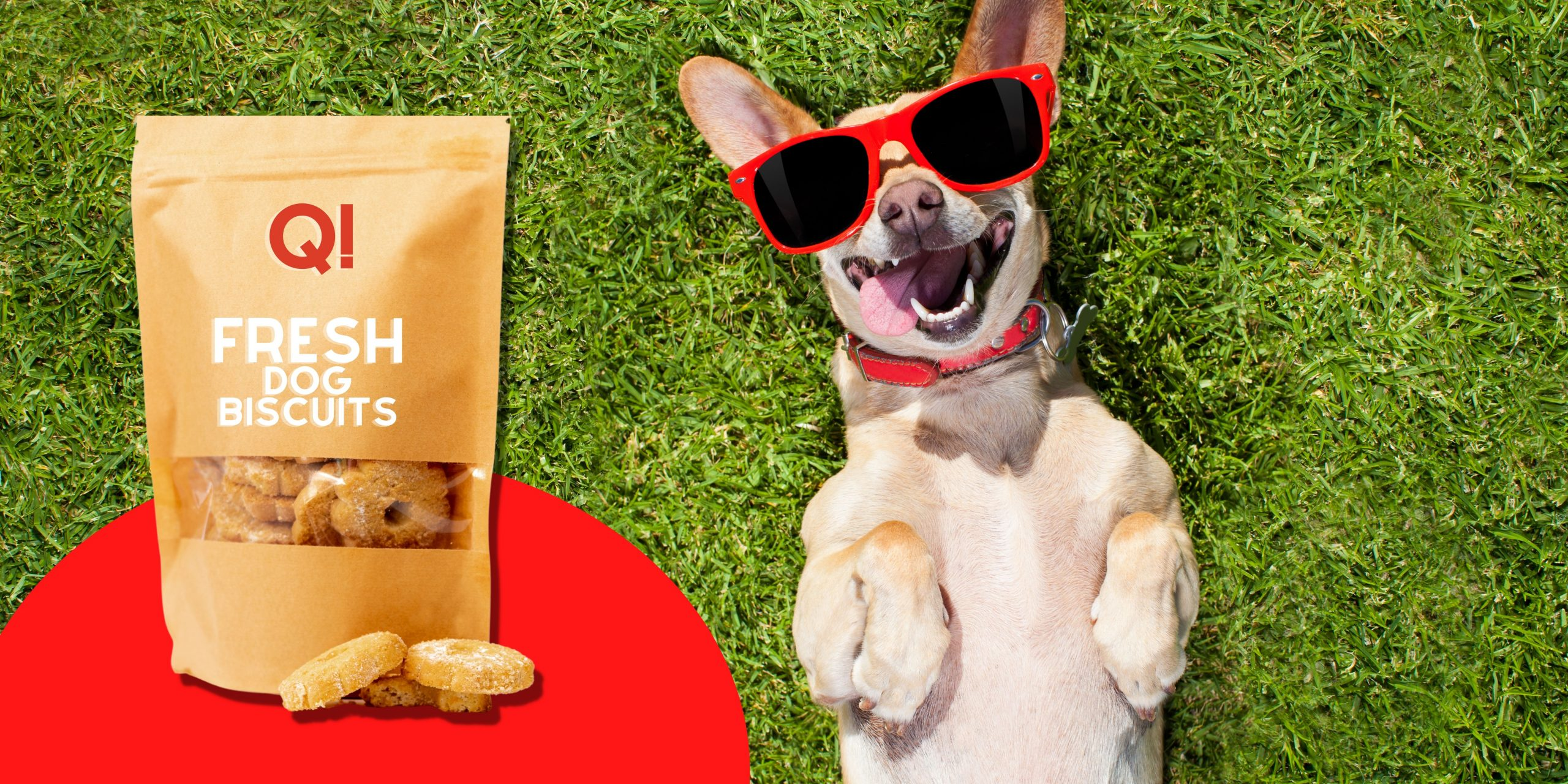 How Flexible Packaging For Pet Food Can Attract Consumers